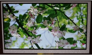 """7.0"""" Low Cost Display, 400cd/m2 with CTP"""